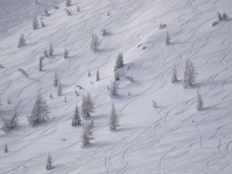 Németh Gábor - Téli sípálya