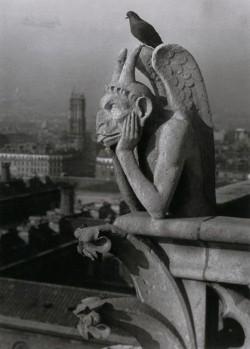 Brassai: Notre Dame, ördög és galamb 1936